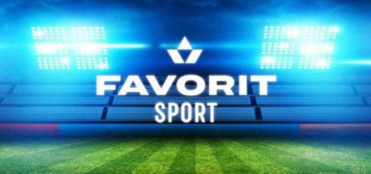 Фаворит спорт: ключевые особенности ставок в БК